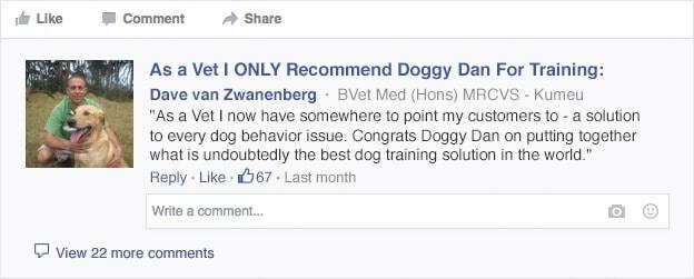 doggy dan dog training