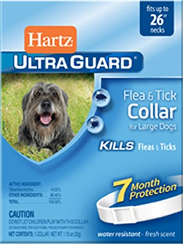 Hartz UltraGuard flea Collar review
