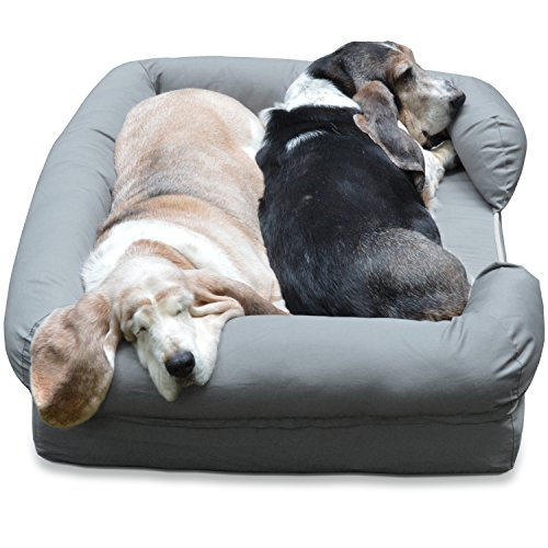 Your dog wants a better bed heres how to choose a dog bed for Best dog bed for large older dogs