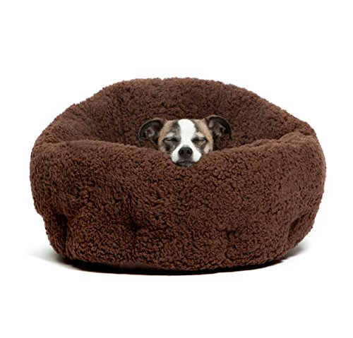 best pet beds