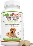 What antibiotics can you give your dog?