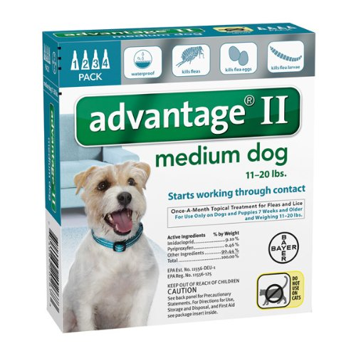 Advantage II flea medicine for dogs