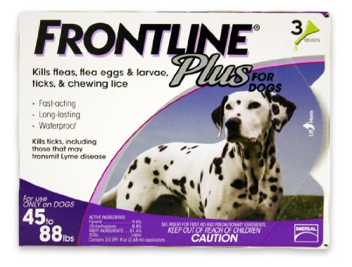 Frontline Plus Flea and Tick Control flea drops for dogs
