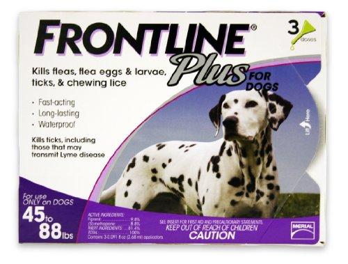 Frontline Plus Flea and Tick Control flea drops for dogs