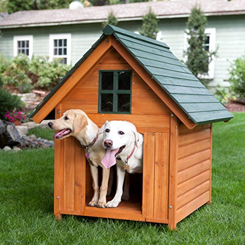 Large dog houses for big dogs great danes mastiffs etc for Large breed dog house