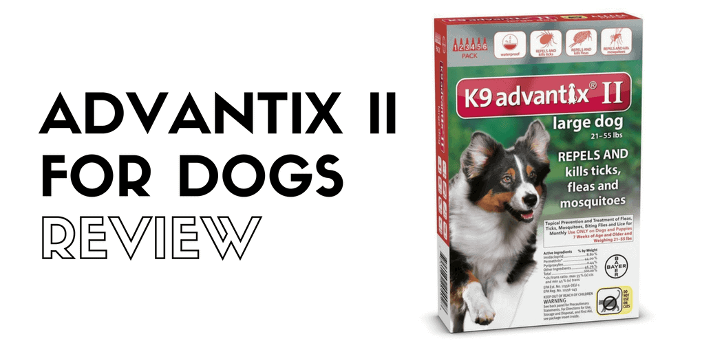 Advantix II flea drops review