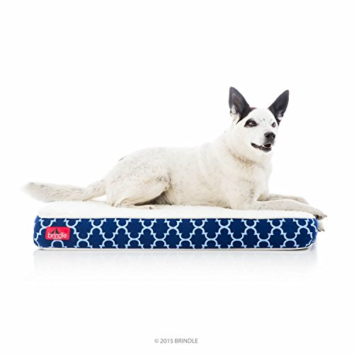 BRINDLE Waterproof Designer Memory Foam Pet Bed review