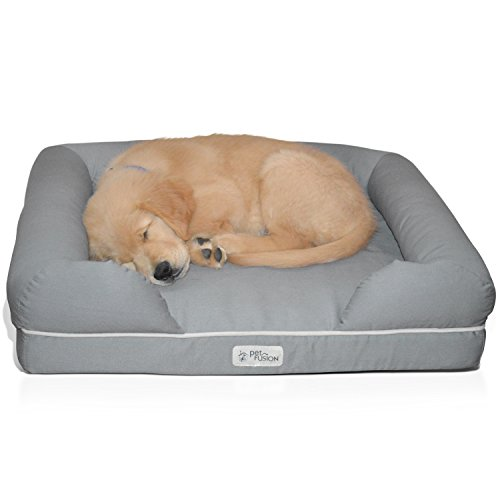 PetFusion Ultimate Pet Bed & Lounge in Premium Edition with Solid Memory Foam review