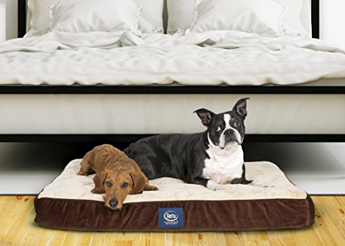Serta Orthopedic Pillowtop Pet Bed review