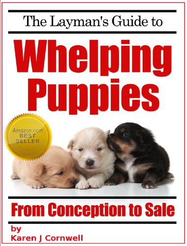 create a whelping box for puppies
