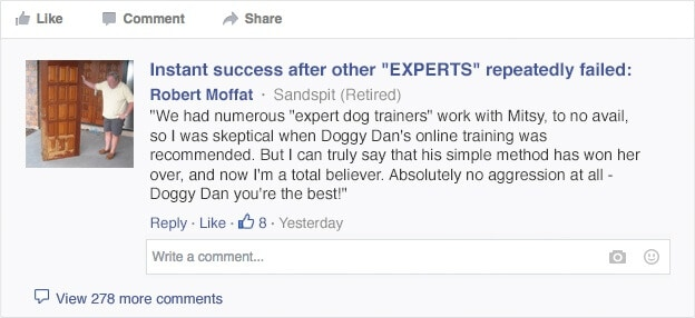 review of doggy dan