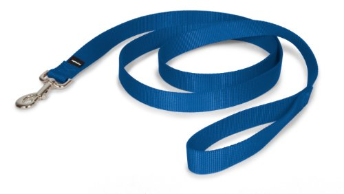 Standard Dog Leash for leash training