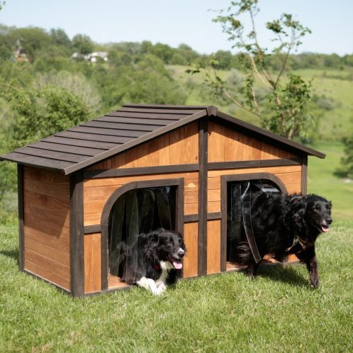 Duplex Wood Dog House review