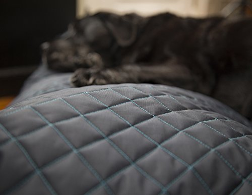 indestructable beds for dogs