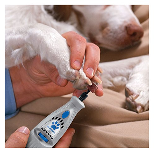 dremel for grinding dogs nails