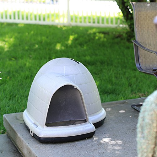 igloo shaped dog house