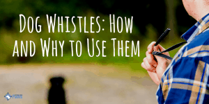 Dog Whistles How and Why to Use Them