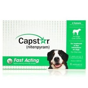 Capstar Flea Pills for Large Dogs