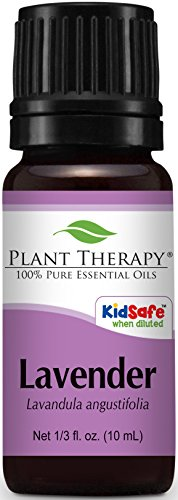 Lavender Essential Oil Repels Fleas on Dogs