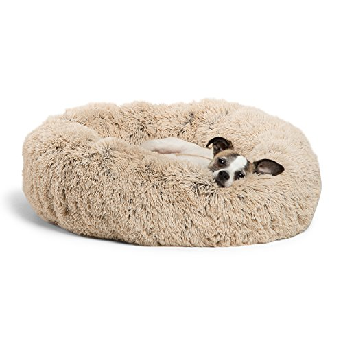 washing plush dog beds