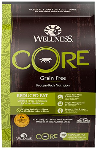 Wellness Core Grain Free Reduced Fat Protein-Rich Nutrition