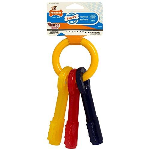 nylabone puppy chew key ring