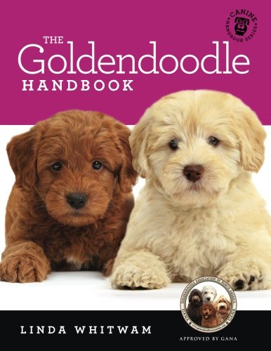 The Goldendoodle Handbook