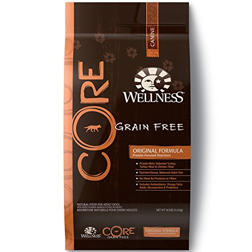 Wellness Core Grain Free Dog Food review