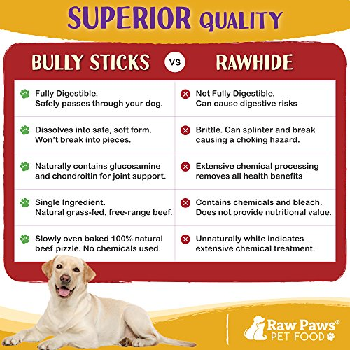 Raw Paws Bully Sticks are a Superior Alternative to Rawhide