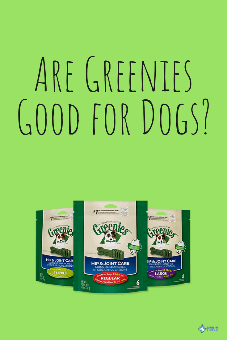 Are Greenies Good or Bad for Dogs - Pinterest