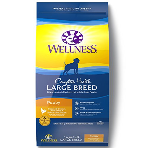 Wellness Large Breed Puppy food review