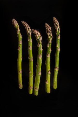 Can dogs have asparagus