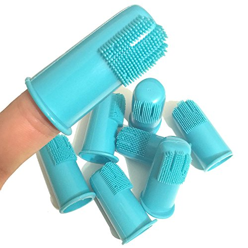 how do you brush your dog's teeth finger toothbrush for doggy dental care