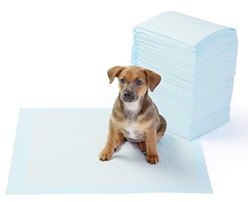 Puppy training potty pads how to house train your new pet dog
