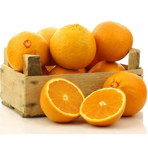 Organic Mountain Navel Oranges color dog poop causes liver disease