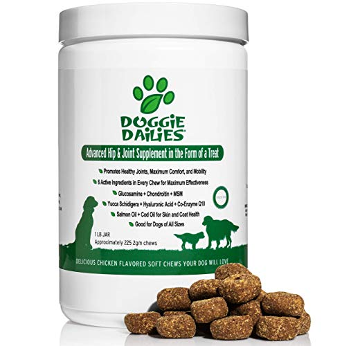 Dog hip joint supplements glucosamine chondroitin soft chews come in dog food