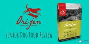 Orijen Senior Dog Food Review