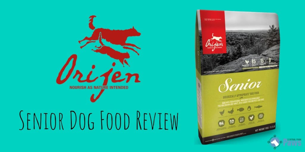 Orijen Senior Dog Food Review