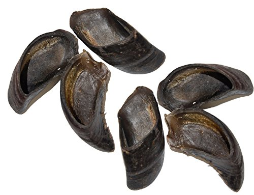 Are cow hooves safe dog treats chew toys dangers precautions
