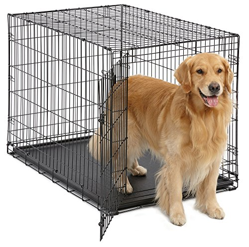 Dog crate proper size large small breed poop in crate