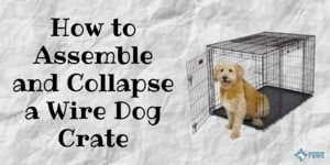 How to Assemble and Collapse a Wire Dog Crate_ Step by Step Instructions