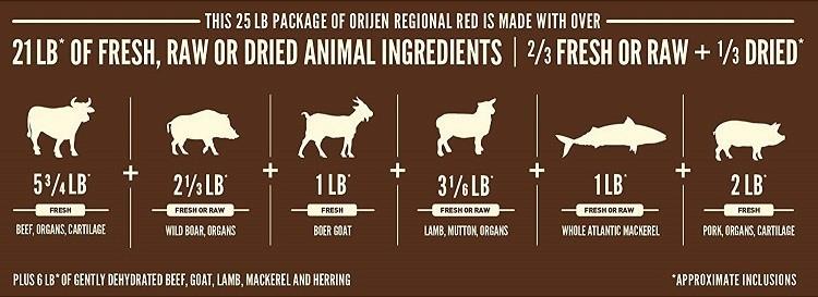 ORIJEN dry dog food regional red biologically appropriate grain free meat ingredients