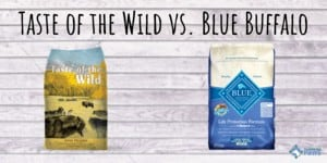 Taste of the Wild vs Blue Buffalo Dog Food Review