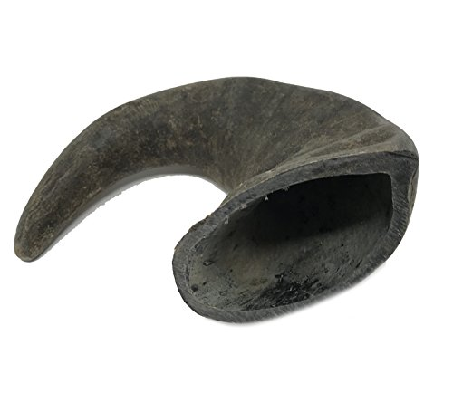 Water buffalo horn safe chew toy alternative better dog treat
