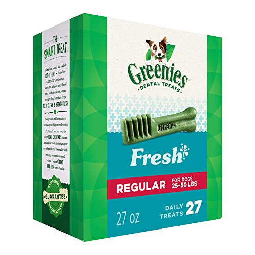 Overall best dental chew dog treat for dogs greenies not dentastix