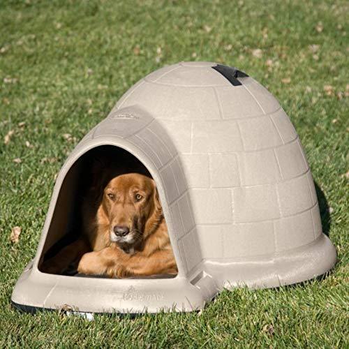 Petmate Indigo all weather igloo dog house with insulation ventilation keep dog warm and cool