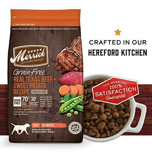 Merrick grain free real texas beef homemade Hereford kitchen dog food