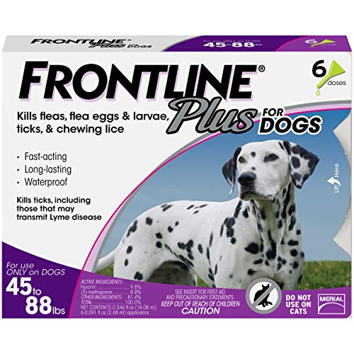 Frontline Plus for dogs topical spot on flea treatment liquid solution life cycle eggs larvae