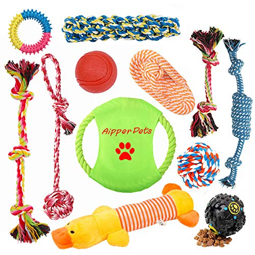 How to use toys to train puppy use shelter dog house crate