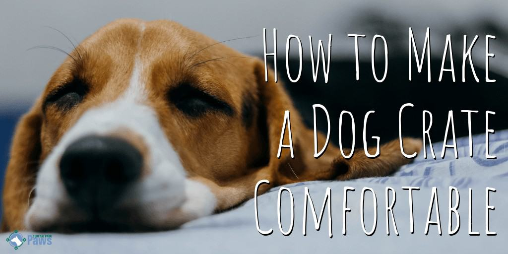 How to Make a Dog Crate More Comfortable